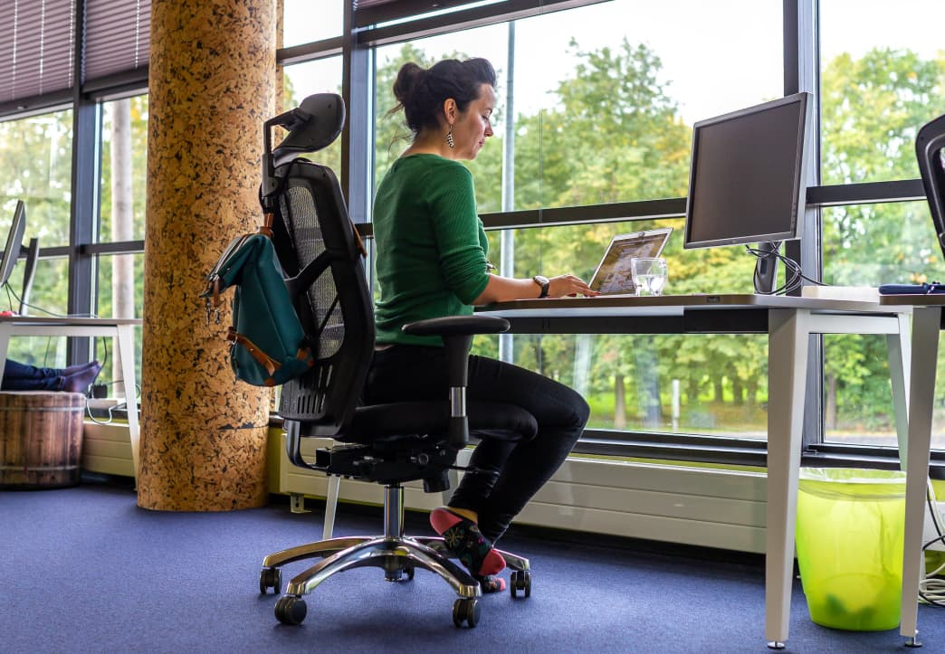 Image of Xolo office 2